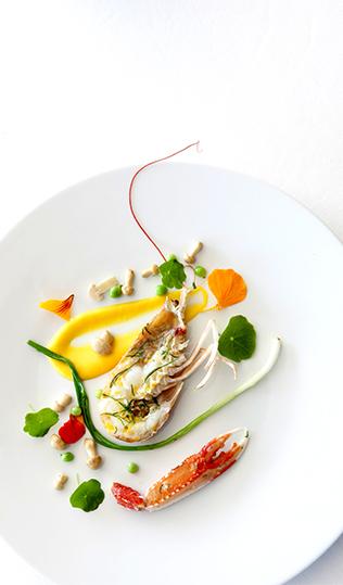 Cigala con salsa de naranja, Saint-Georges y flores de taco de reina